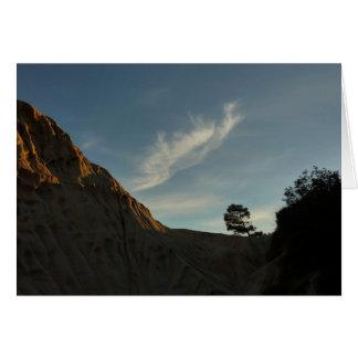 Lone Torrey Pine California Sunset Landscape Card