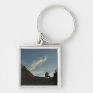 Lone Torrey Pine California Sunset Landscape Keychain