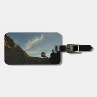 Lone Torrey Pine California Sunset Landscape Tag For Luggage