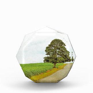 Lone Tree Award