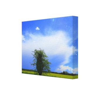 Lone Tree Big Sky! Canvas Print