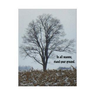 Lone Tree In A Field Canvas Print