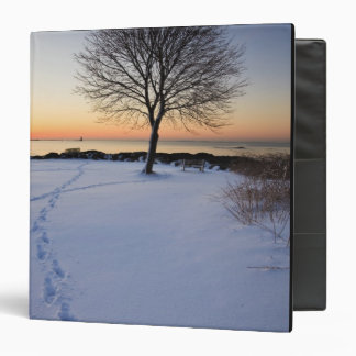 Lone tree in fresh snow at New Castle Common Vinyl Binder
