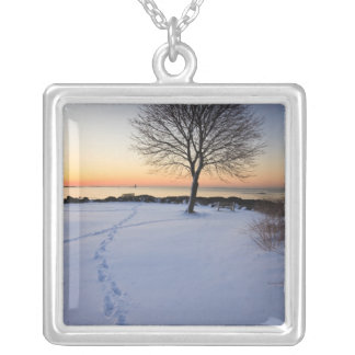 Lone tree in fresh snow at New Castle Common Square Pendant Necklace