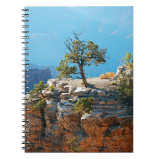Lone tree in grand canyon spiral notebook