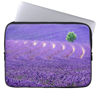 Lone tree in Lavender Field, France Computer Sleeve