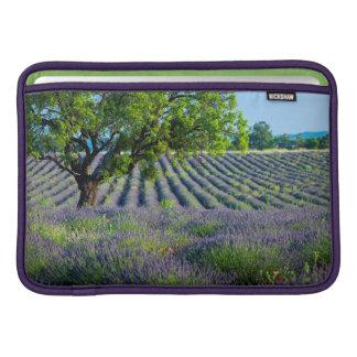 Lone tree in purple field of lavender MacBook sleeve