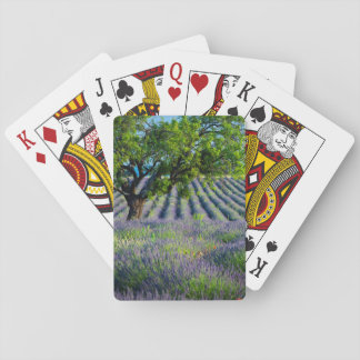 Lone tree in purple field of lavender playing cards
