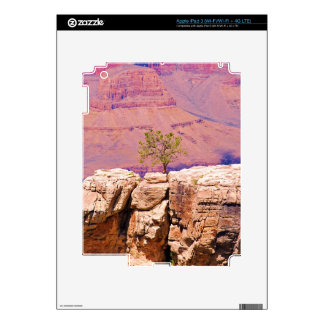 """""""Lone Tree on Canyon Ridge"""" collection iPad 3 Decals"""