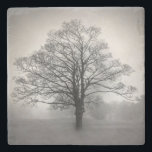 """Lone Tree Stone Coaster<br><div class=""""desc"""">Stylish stone coaster with a black and white hazy photograph of a lone tree.  Customize to add your own text.  Great gift idea for anyone.</div>"""