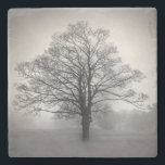 "Lone Tree Stone Coaster<br><div class=""desc"">Stylish stone coaster with a black and white hazy photograph of a lone tree.  Customize to add your own text.  Great gift idea for anyone.</div>"