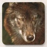 "Lone wolf Cork Coaster (6) 3.8x3.8"""