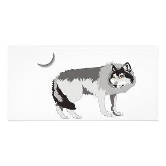 Lone Wolf II -Mystery Canine! Custom Photo Card