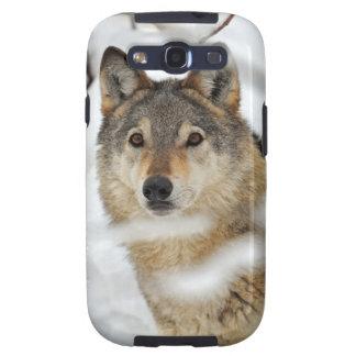 Lone Wolf in Snow Samsung Galaxy S3 Case
