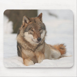 Lone Wolf Mouse Pad