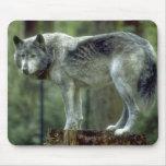 Lone Wolf Mousepad
