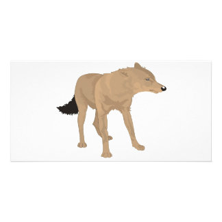 Lone Wolf -Mystery Canine! Card