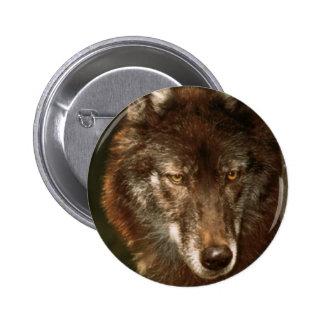 Lone wolf pinback button