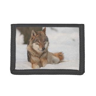 Lone Wolf Tri-fold Wallet