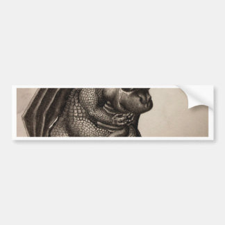 Lonely Baby Dragon Bumper Sticker