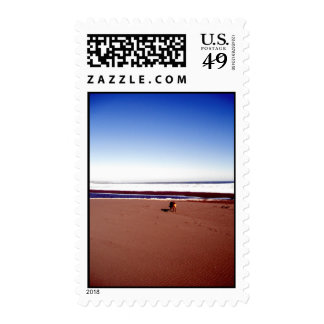Lonely Beach Postage Stamp
