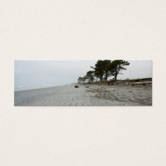 Lonely Beach, Westport DSC8483 Mini Business Card