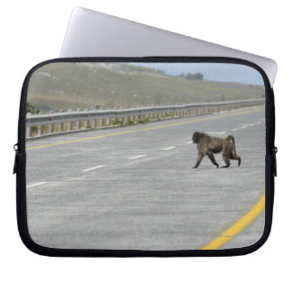 Lonely Chacma baboon crossing highway road Laptop Sleeve