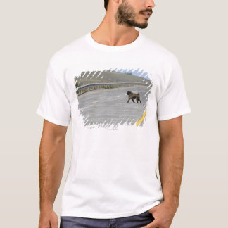 Lonely Chacma baboon crossing highway road T-Shirt