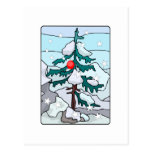Lonely Christmas Tree Postcards