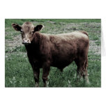 Lonely Cow Greeting Cards