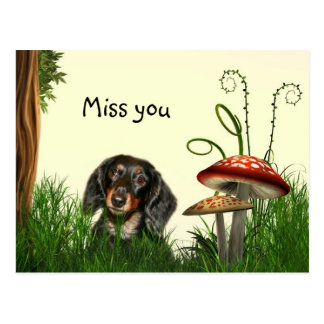 Lonely Dachshund Postcard