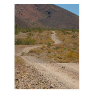 Lonely Desert Road 01 Postcard