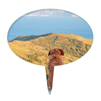 Lonely dog watching on Gibraltar strait Cake Topper
