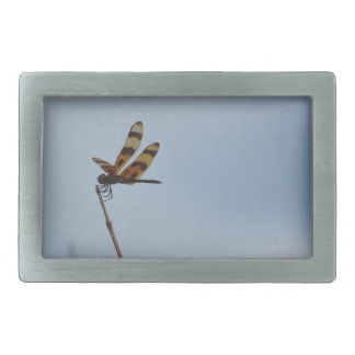lonely dragonfly rectangular belt buckle