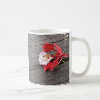 Lonely Flame Tree Blossom On A Boardwalk Classic White Coffee Mug