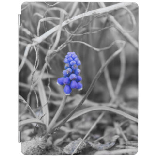 Lonely Grape Hyacinth Select Color iPad Smart Cover