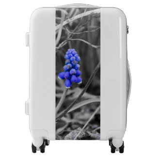 Lonely Grape Hyacinth Select Color Luggage