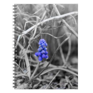 Lonely Grape Hyacinth Select Color Notebook