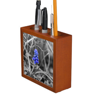Lonely Grape Hyacinth Select Color Pencil/Pen Holder