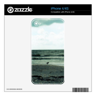 Lonely Gull iPhone 4 Decal