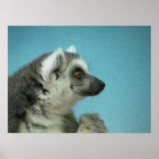 Lonely Lemur Poster