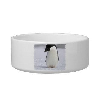 Lonely Penguin Pet Bowl