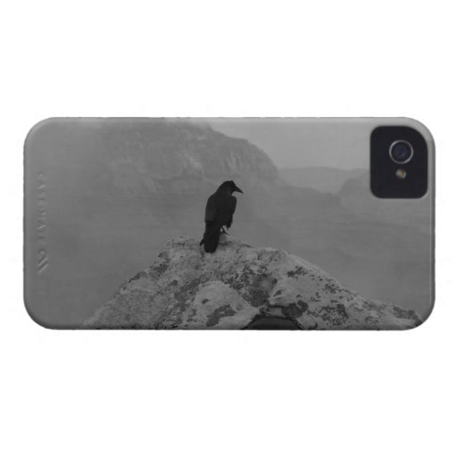 Lonely Raven Case-Mate iPhone 4 Case