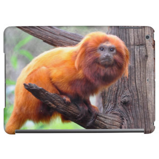 Lonely Red Leaf Monkey iPad Air Covers