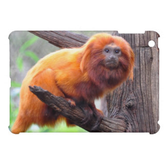 Lonely Red Leaf Monkey iPad Mini Covers