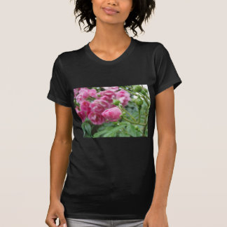 Lonely Rose Tee Shirt