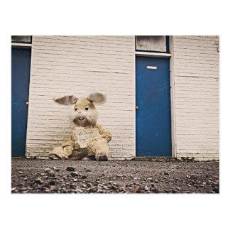 lonely sad bunny dolls postcard