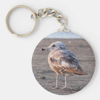 Lonely Seagull (color) Key Chain