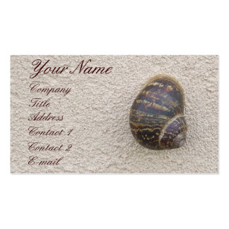 Lonely Snail on the Wall Profile Card