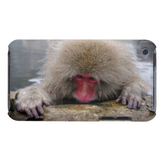 Lonely snow monkey in Nagano Japan Barely There iPod Covers